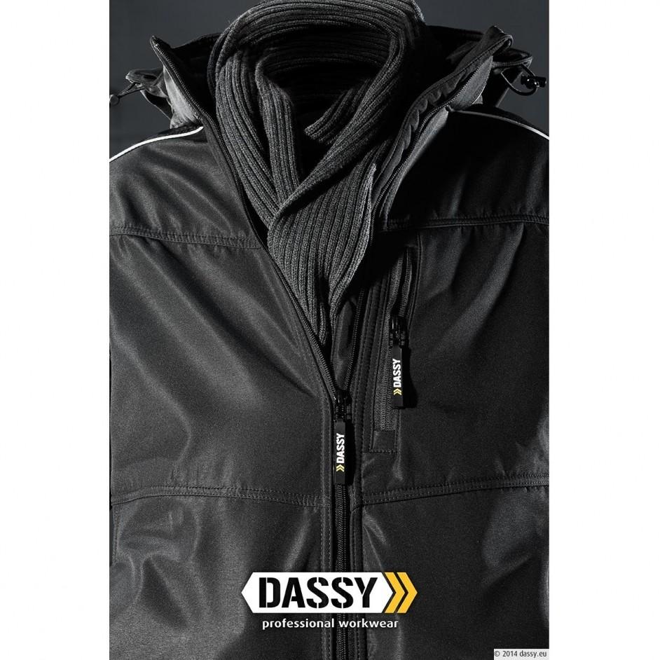 Dassy Aura