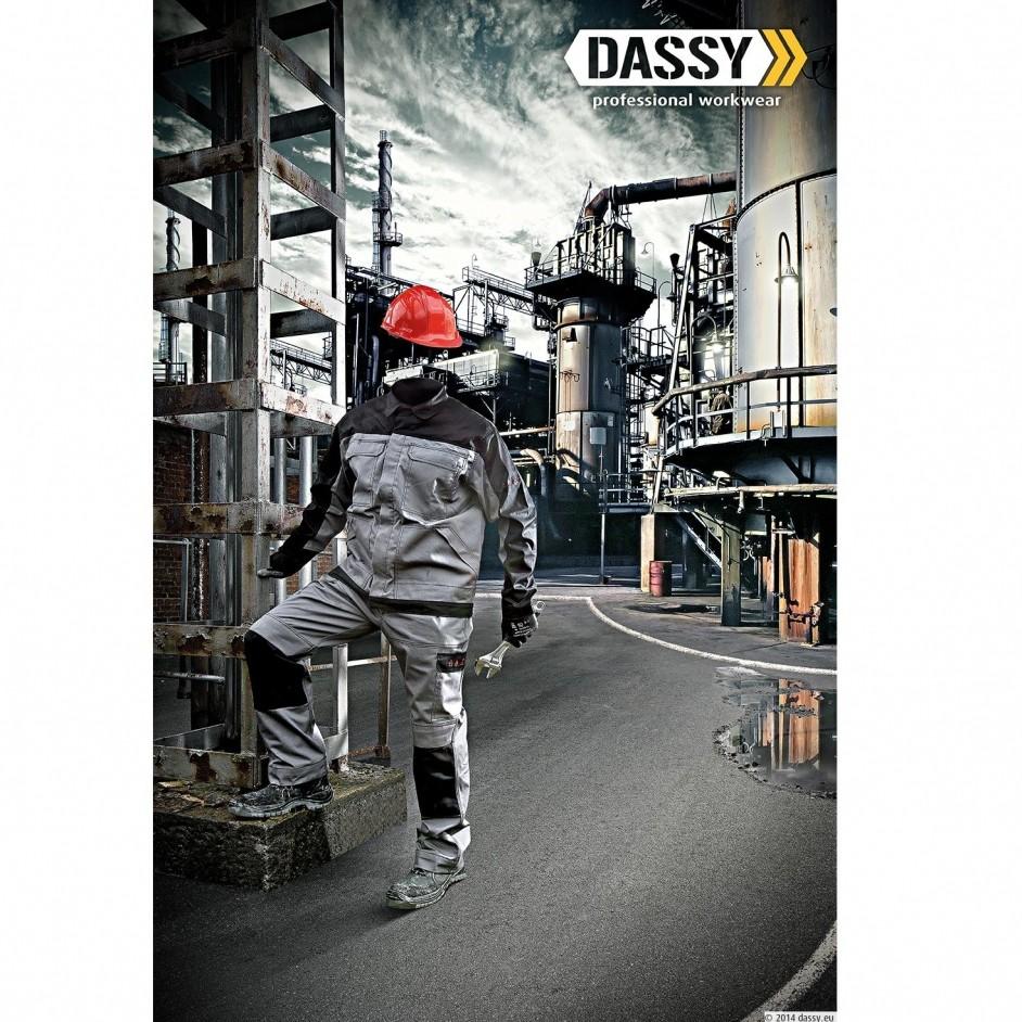 Dassy Lincoln