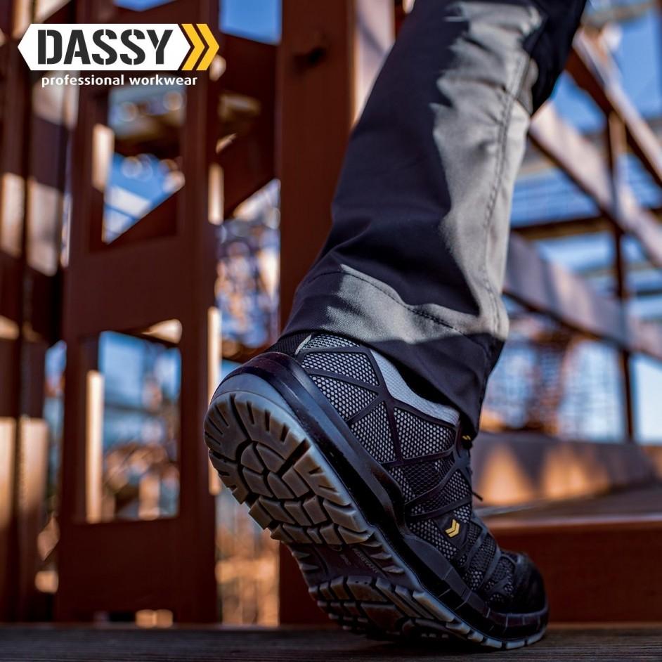 Dassy Nox