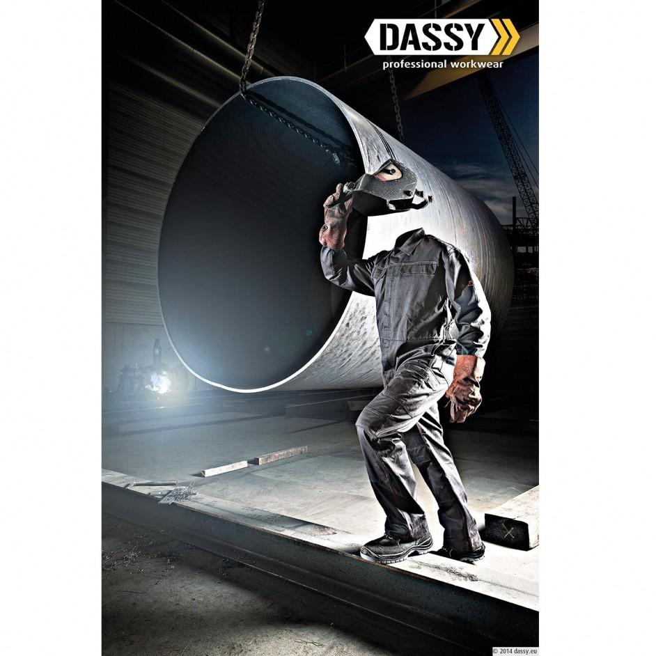 Dassy Toronto