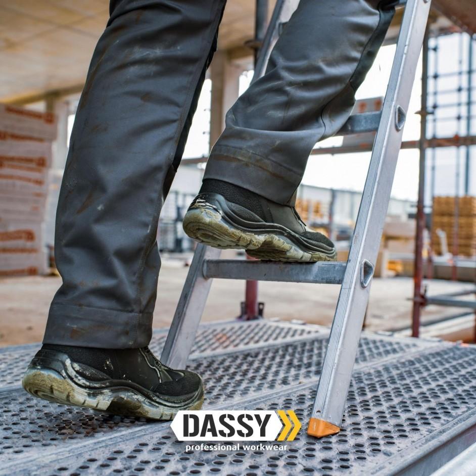 Dassy Dassy Versailles