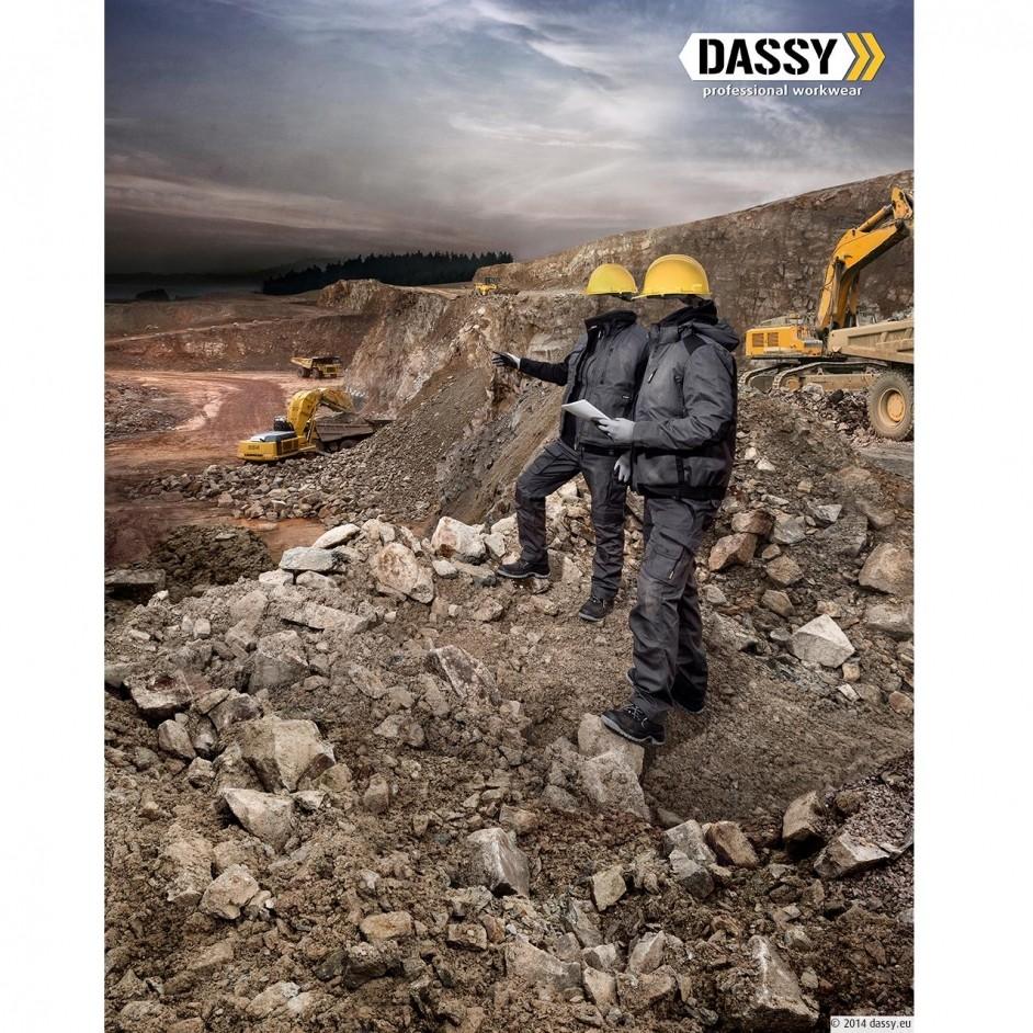 Dassy Zeus S3 lage veiligheidsschoen