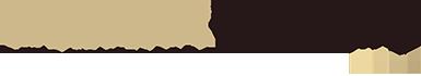 Webshirt Company